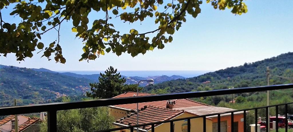 foto panorama (3)